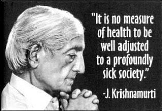 """In the words of #starleaf character Seth Guardrail Slaughter: """"Yeah, what he said"""". 😊😎👽😇 . . #krishnamurti #quoteoftheday #spiritual #lifelessons #meditation #inspirationalquotes"""