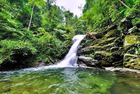 WhatsApp Image 2017-12-waterfall16 at 6.13.11 PM.jpeg