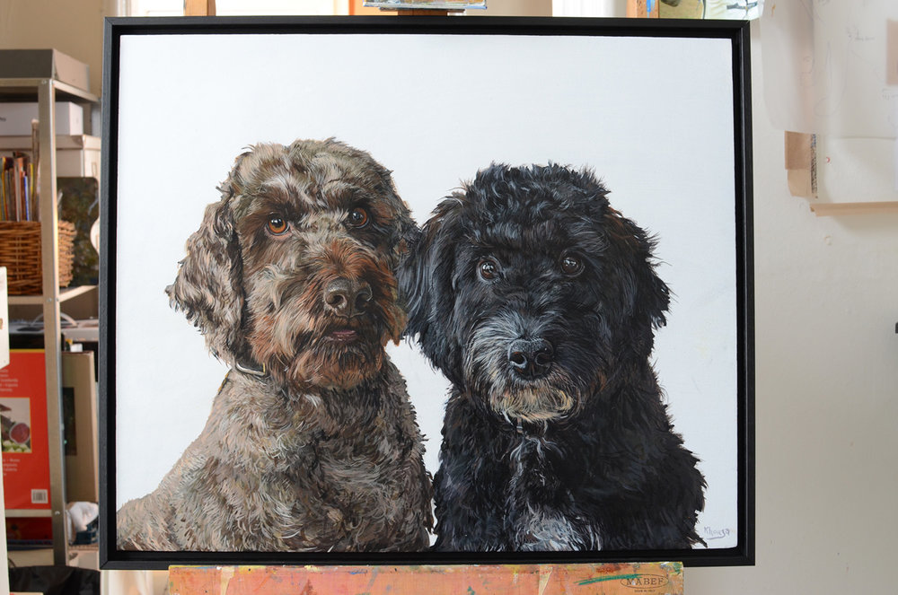 Yellow Rose Design Gallery | Cockapoo animal portraits pet commissions by Fourlegs in Gloucestershire UK