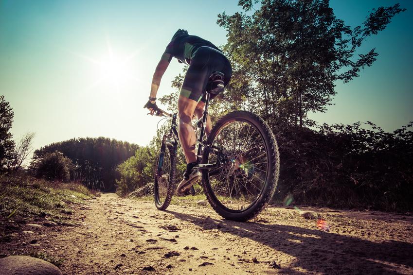Rent a bike -