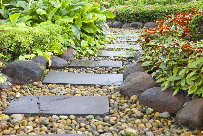 stepping stone.jpg