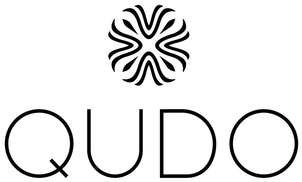 Resultado de imagen de qudo logo
