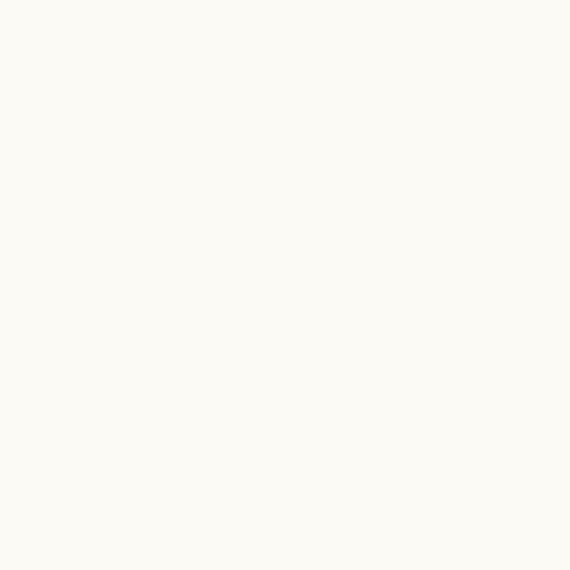 Vetro lucido opaco bianco assoluto Y4826XC