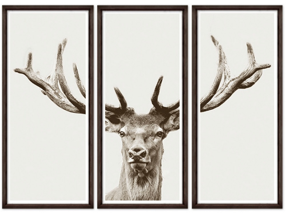 Magnificant Stag
