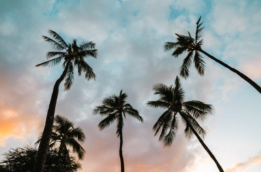 La + hawaii -