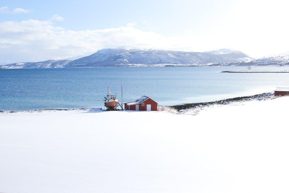 scandinavia -