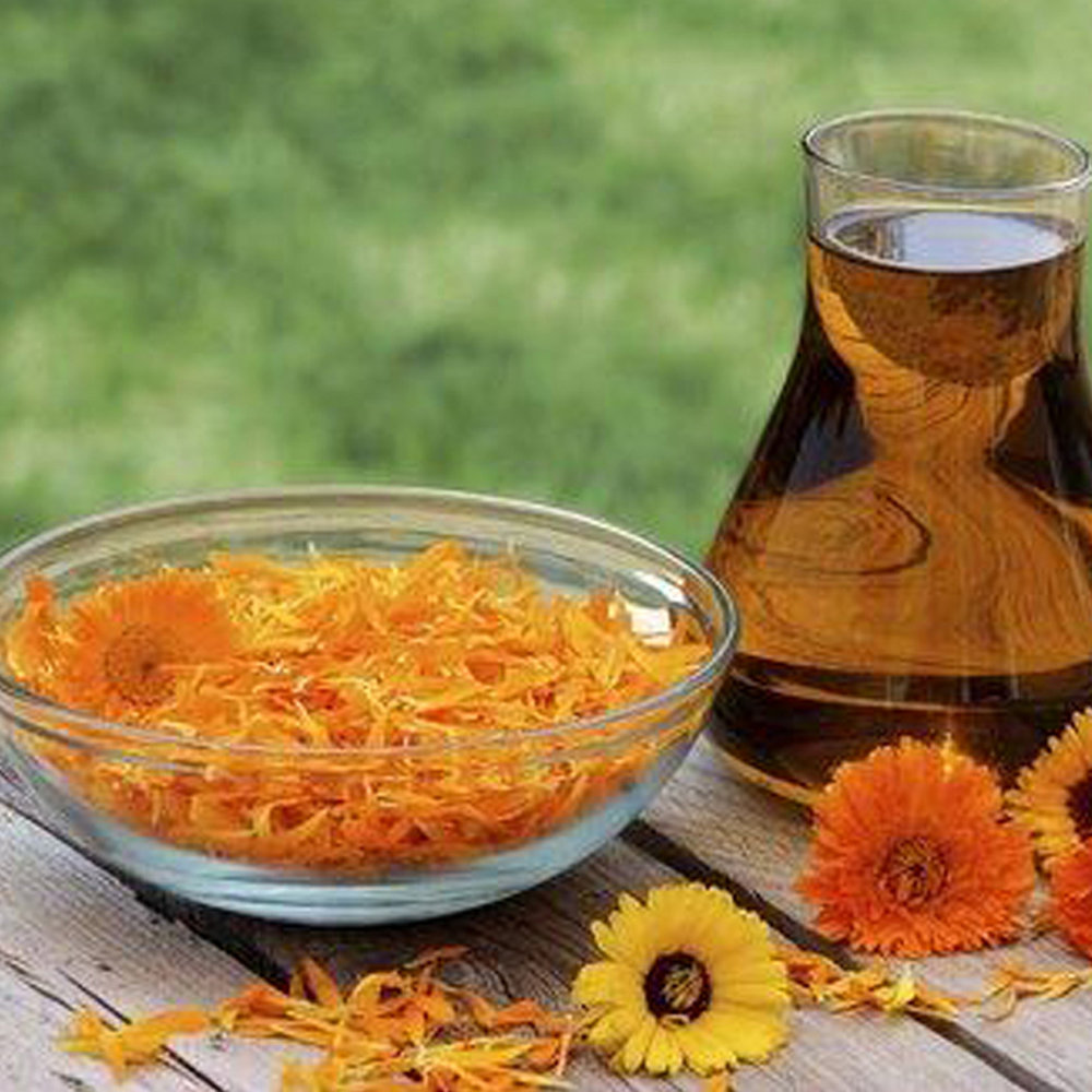 Jour 6Les huiles végétales, le gel d'aloès, quelques recettes d'excipients simples -