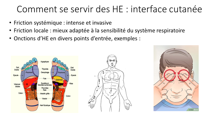 interface cutanée respiration.png
