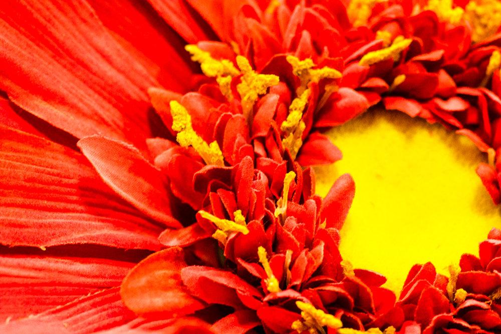 Fake flower.jpg