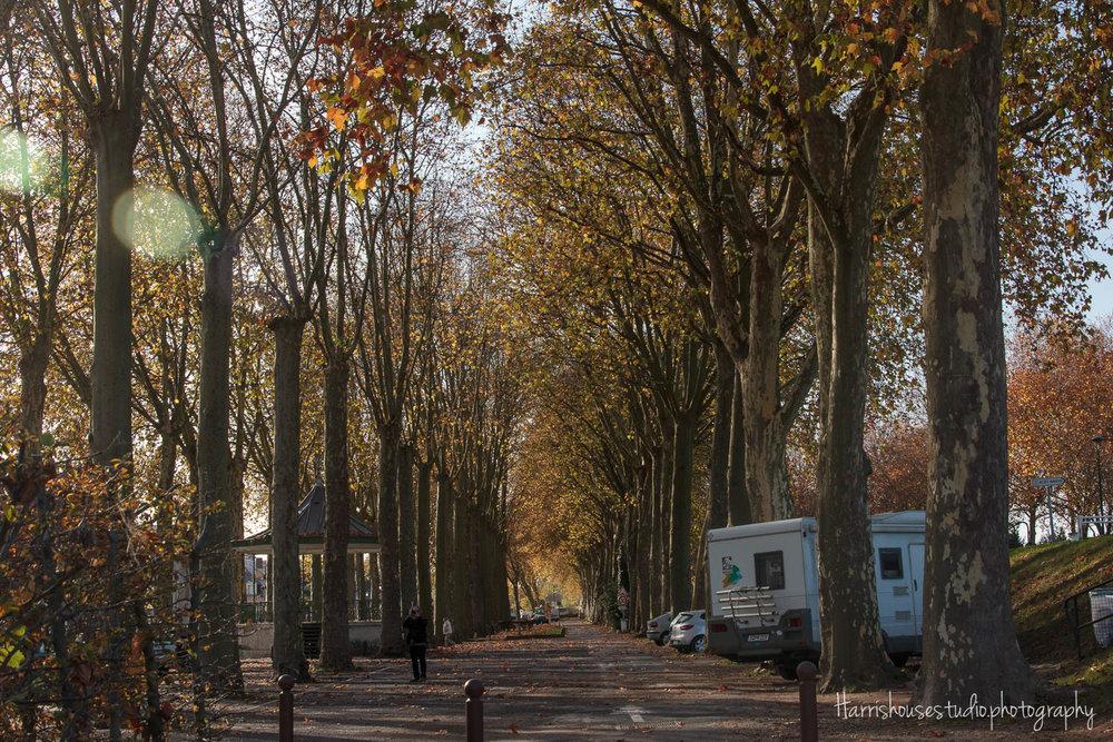Amboise-9.jpg