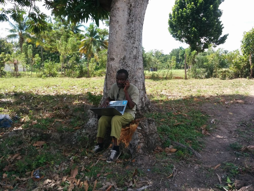 Some big stuff is happening under this mango tree, Chesnel knows how to take care of business.