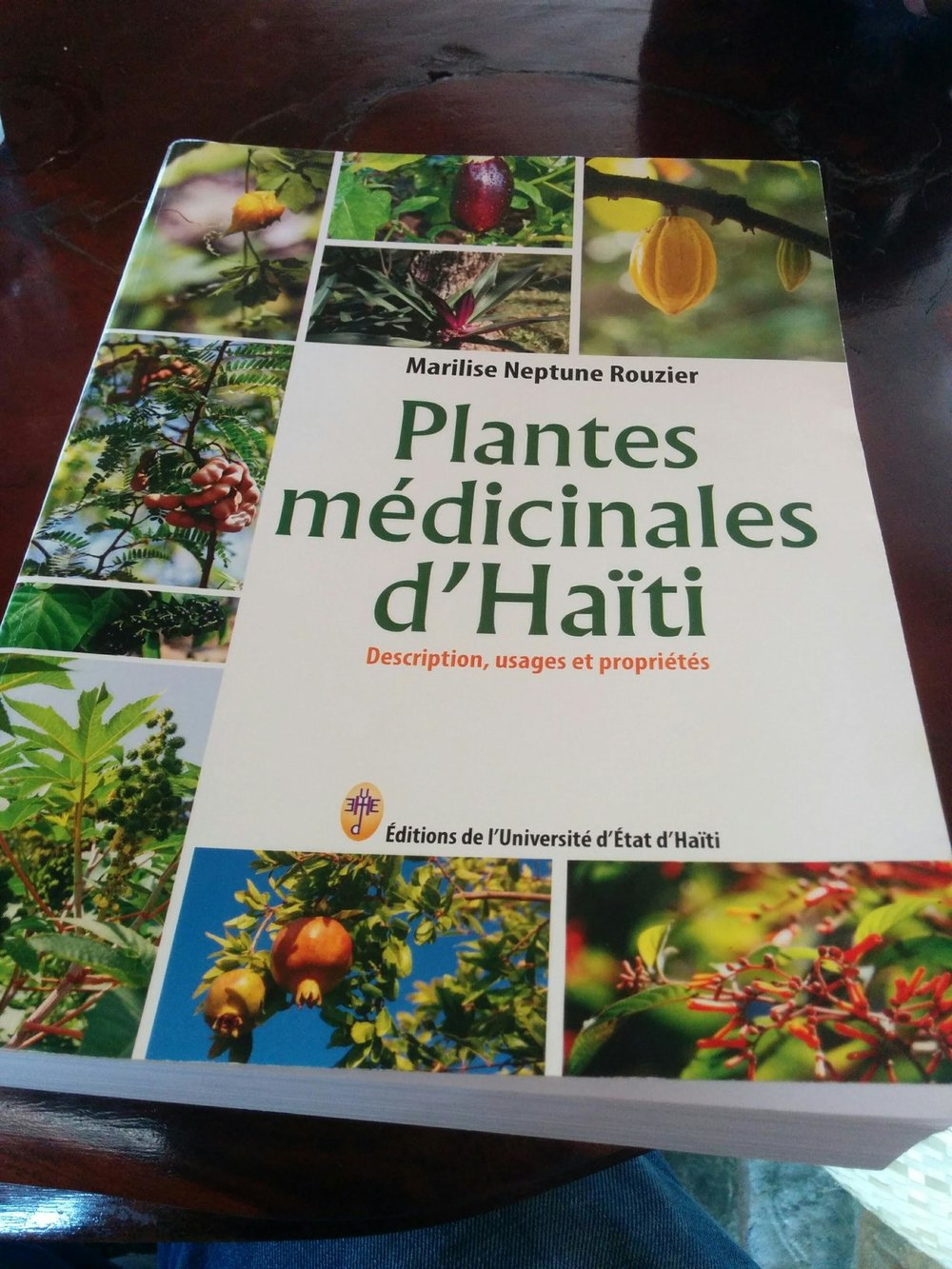 Just to make sure i wouldn't have to use my health insurance, I picked up this amazing book about all of the medicinal plants in Haiti, complete with thorough references it definitely beats asking 3 people what a plant does and seeing if I get the same answer. I did always get the same answers by the way, Haitians know their plants like nobody's business.