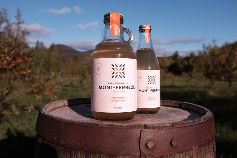 Kombucha du Mont-Ferréol  (Canada)   Mannanova team played a key role helping start the Kombucha du Mont-Ferréol company. Sébastien and Thomas have from the beginning grasped the essence of our project, with its strong focus on the boreal flavors and local sourcing, and have accompanied us in the development of our flavors. Hats off to Mannanova.   –   Léandre Saindon, Founder.