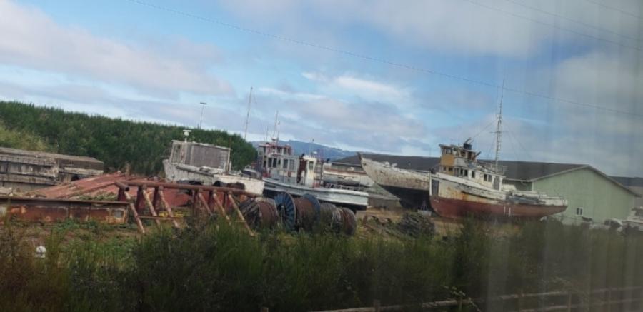 Abandoned ships outside my hotel window