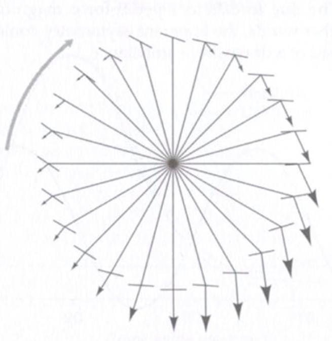 Direction and magnitude of pedal stroke. [International Sport Med Journal)