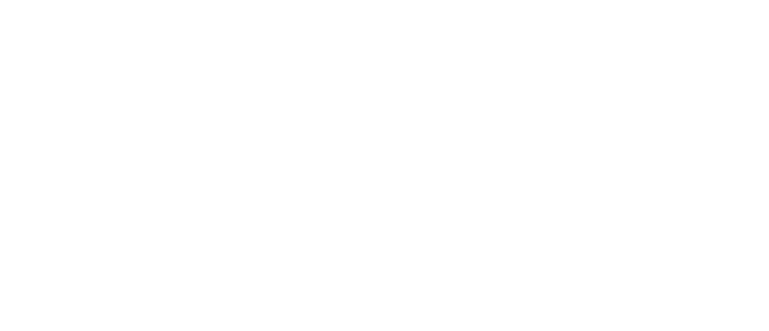 Disaster Law and Consulting - DLC
