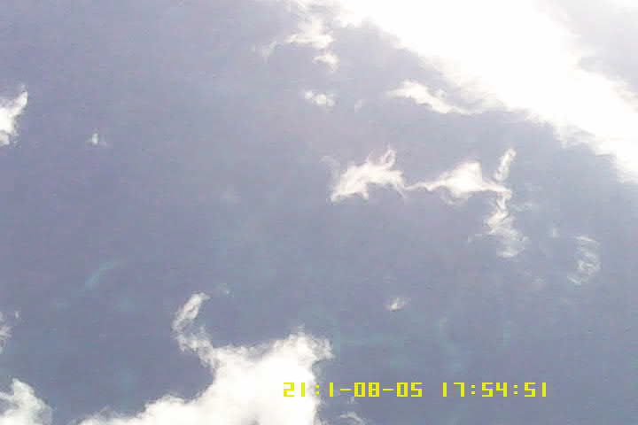 birdcam experiment_06.png