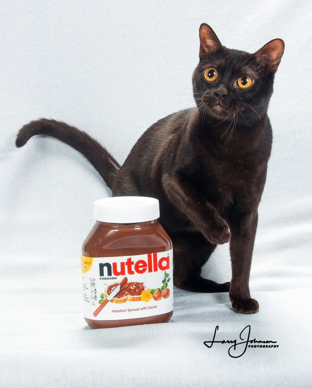Nutella  Photo by Larry Johnson