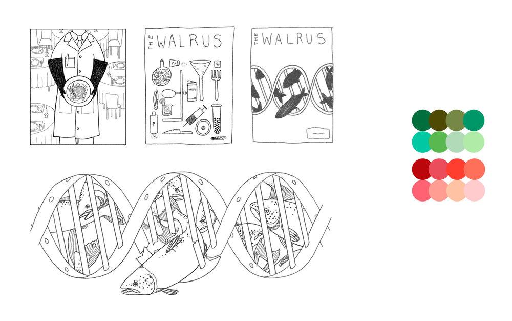 emily-rose-artist--genetically-engineered-salmon--editorial--concept-art--freelance--illustration--digital-art--fine-art.jpg