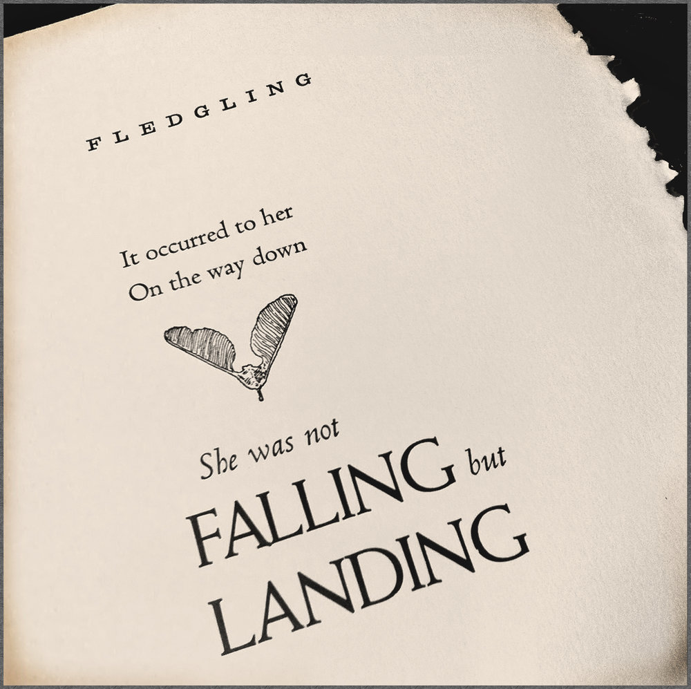 FallingLandingBWadjWEB.jpg