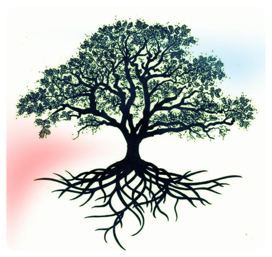 tree image.jpeg