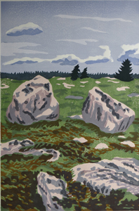 LITTLE MOOSE ISLAND ERRATICS