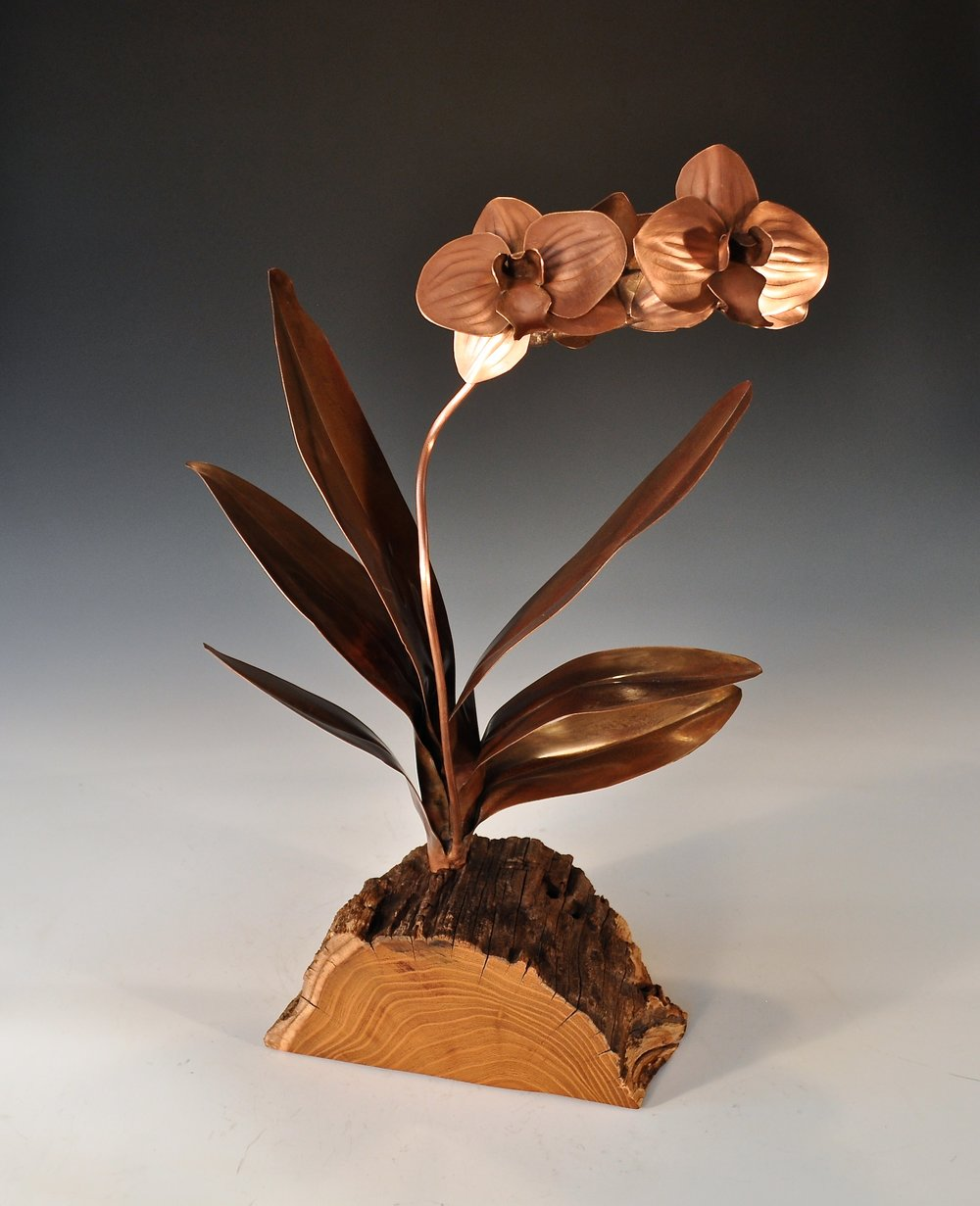 Orchid in Wood