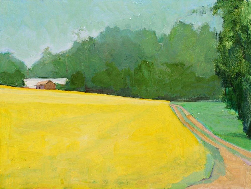 Rain on a Mustard Field, 12x16