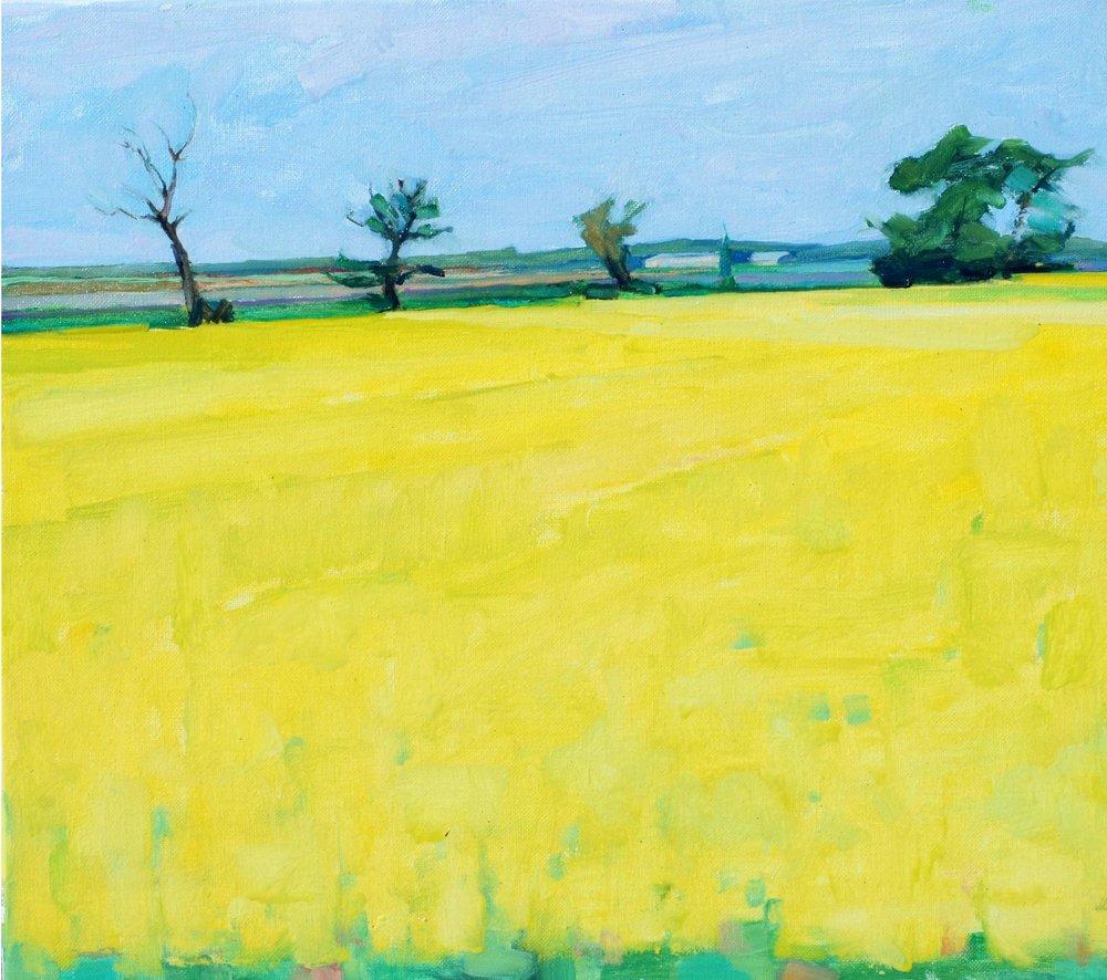 Mustard Field. 14x18