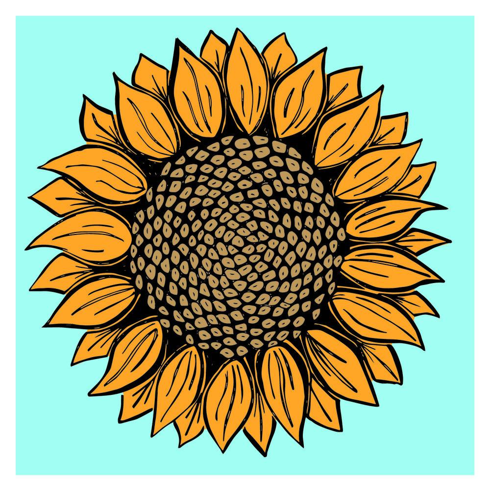 eknopf_sunflower.jpg