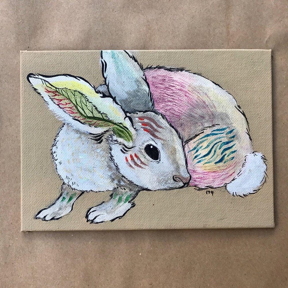 A_Villalobos_Bunny.jpg