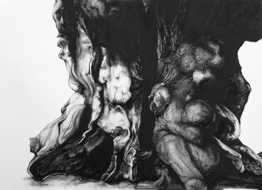Windsor  -  70cm x 50cm - Charcoal on Paper - 2013