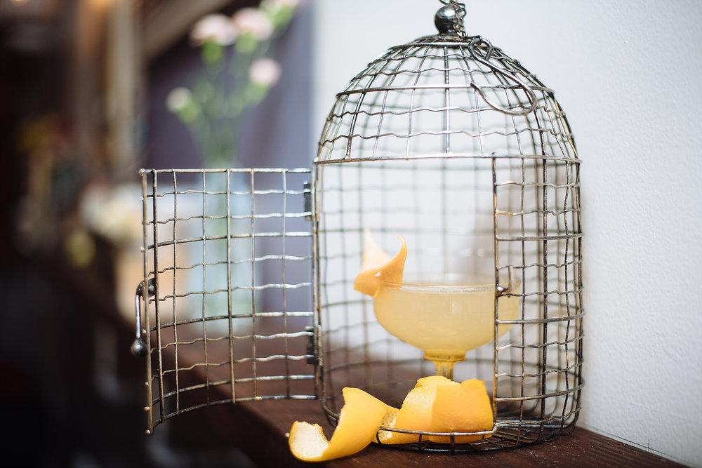 Odd Birds Bar