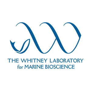 UF Whitney Lab and Sea Turtle Hospital