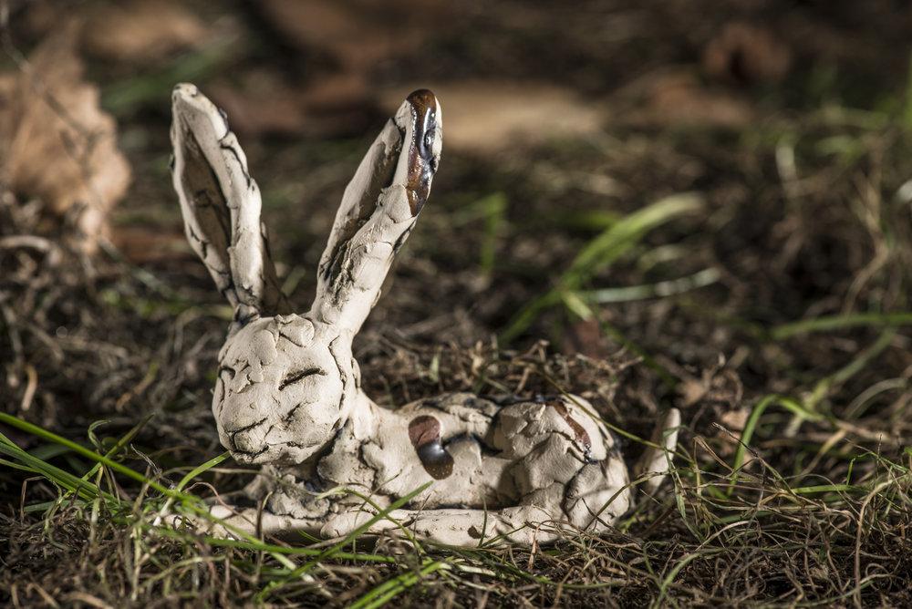 Miniature Hare