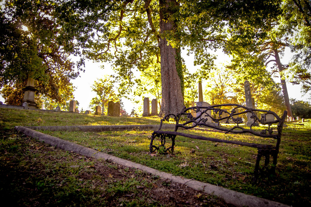 Fall in Hollywood Cemetery Richmond Virginia Photography