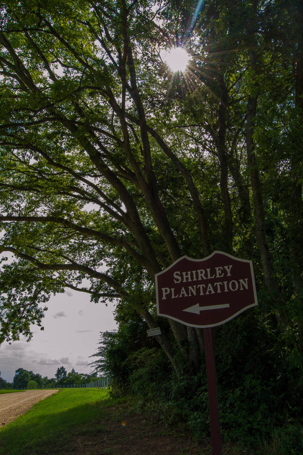 Welcome to Shirley (1 of 1)