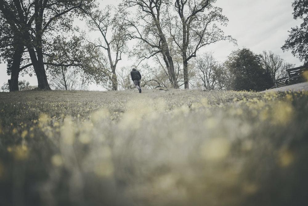 Things To Do In Richmond VA: Maymont Park Richmond VA Spring