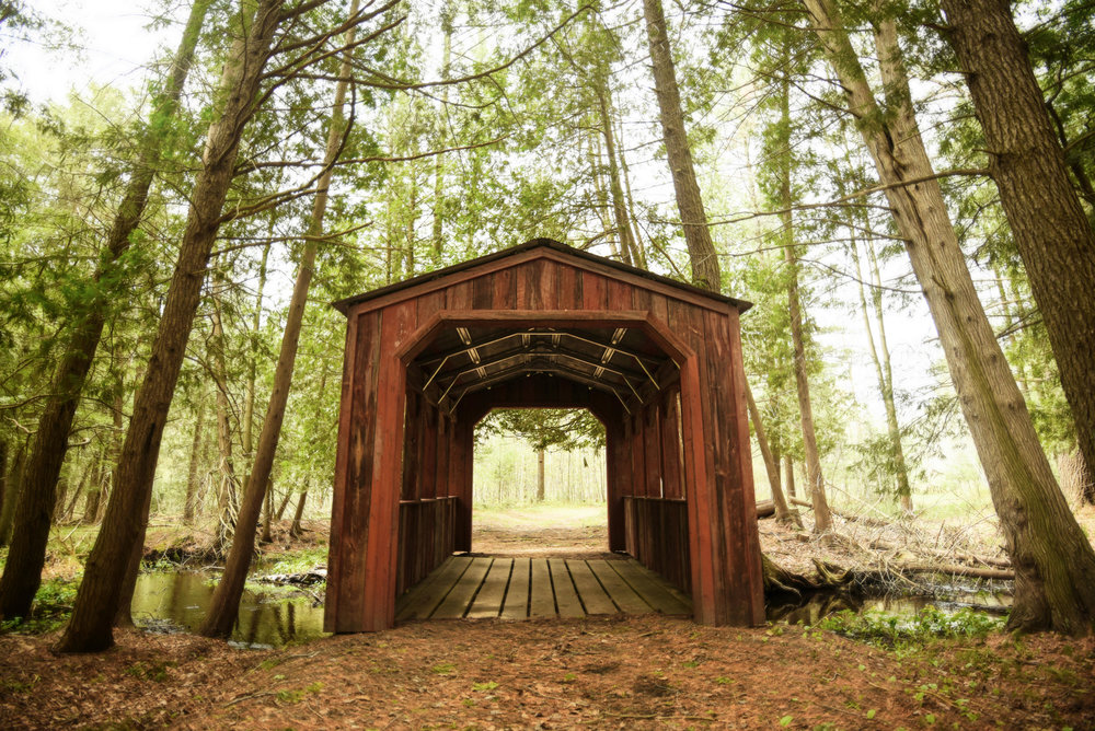 Northern Michigan Wedding Bridge