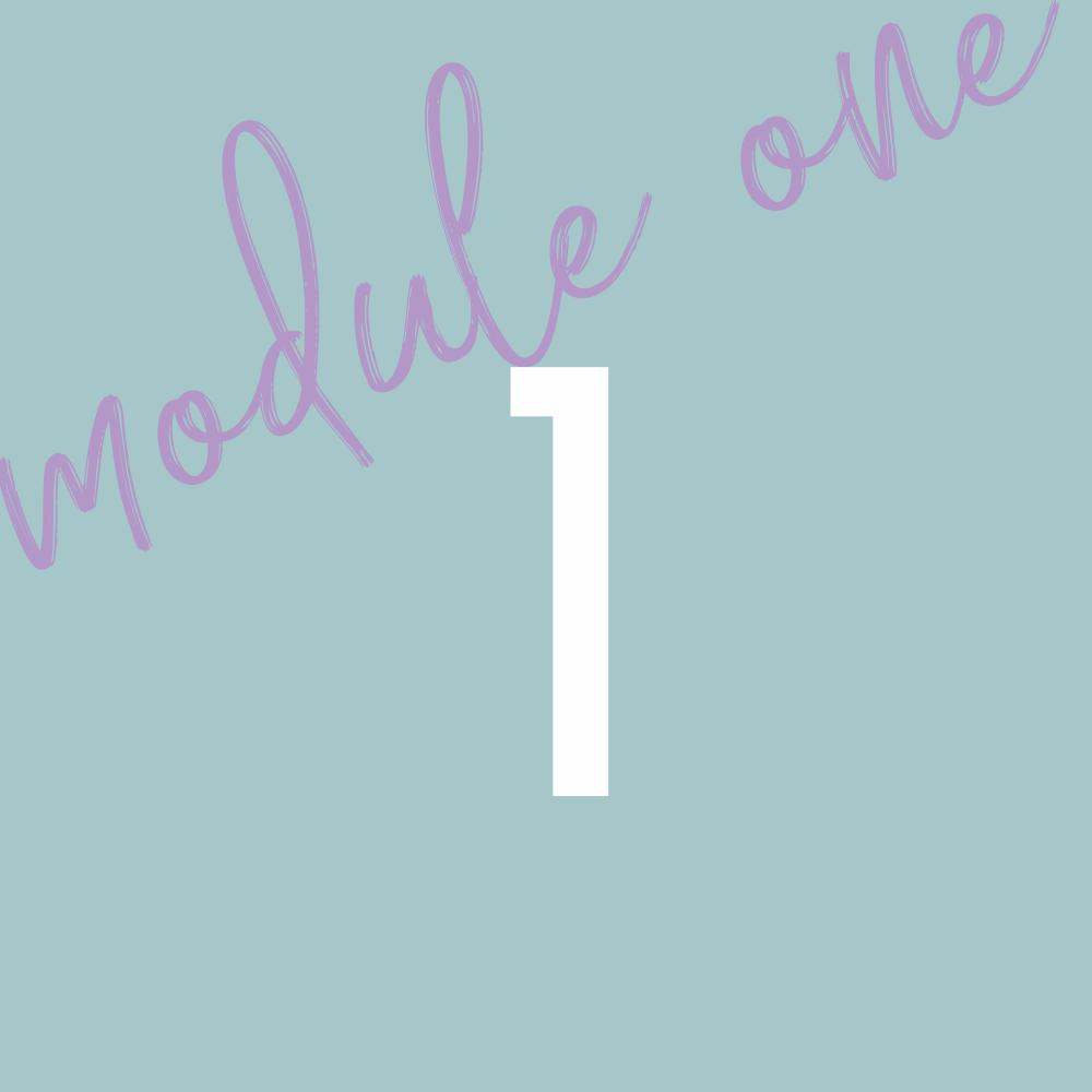 Module 1 - OverviewLesson 1Lesson 2Lesson 3