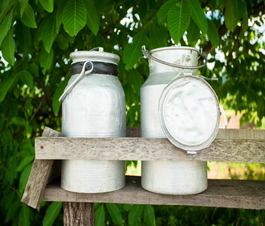 Amish Milk