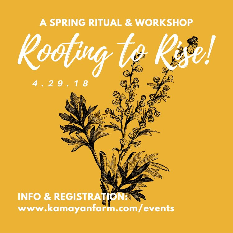 """Rooting to Rise "",  Sunday April 29th, 10:30-3:30pm @  Kamayan Farm       Activities for this workshop include:  -Land Blessing and offering  -Seed-starting and planting  -Plant identification and harvesting techniques  -Identifying parts of the body related to spring  -Working with herbal bitters and roots      For full details and registration visit  Kamayanfarm.com   This workshop is the Spring portion of a year-long series that unfolds over all four seasons called ""Land As Body"" . Workshops can be taken as one-offs or purchased with the whole series.  Cost: Sliding Scale, sliding scale of $80-120 per workshop or $320-$480 for the entire series."