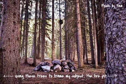 Image framing -Nature Photography & Lifestyle Blog - Alberta, Canada - Pixels by Tina