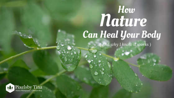 How Nature can heal your body and mind - nature photography & lifestyle Blog- Pixels by tina