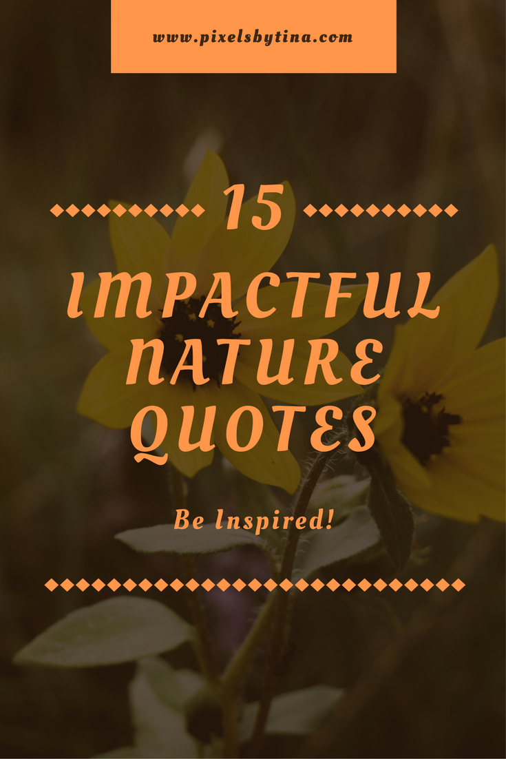 nature quotes to inspire you to connect with nature - lifestyle blog - pixels by tina