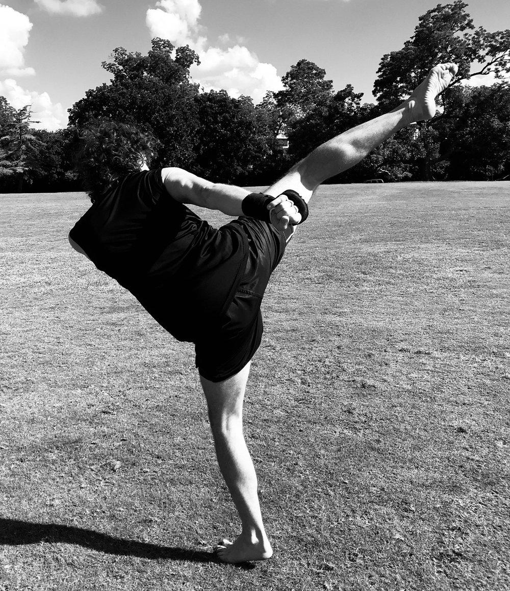 Fabio kick