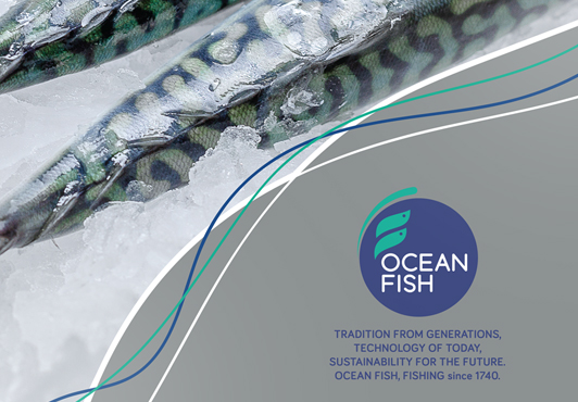 ocean-fish-case-study-brochure-crop.jpg