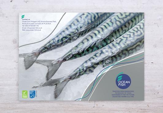 ocean-fish-case-study-brochure-front-flat.jpg