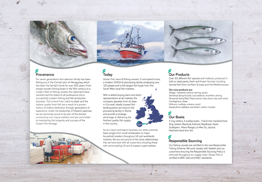ocean-fish-case-study-brochure-inside-flat.jpg