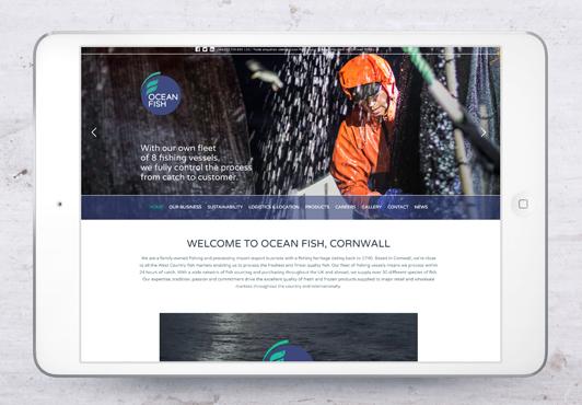 ocean-fish-webpage-01.jpg